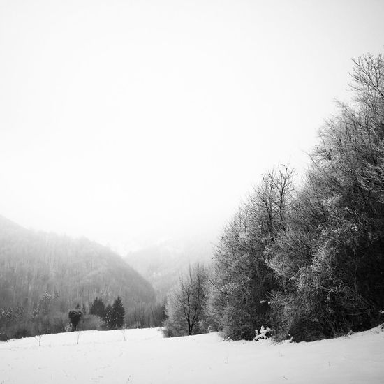 Fields and forests of Samobor, Croatia, 2017. Samobor Samoborsko Gorje Zumberak Fields Forests Trees Snow Winter Nature Landscape Tranquility Beauty In Nature Outdoors Scenics No People Bare Tree Miles Away