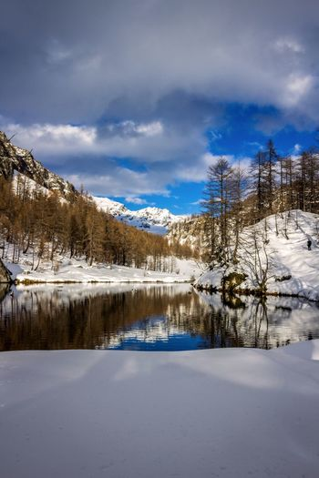 Snow Winter Cold Temperature Scenics - Nature Tree Mountain Tranquil Scene Tranquility Plant No People Snowcapped Mountain Beauty In Nature Blue Landscape Land Lake Tree Tranquility EyeEm Best Shots EyeEmNewHere EyeEm Nature Lover EyeEm Selects EyeEm Gallery Sky Scenics