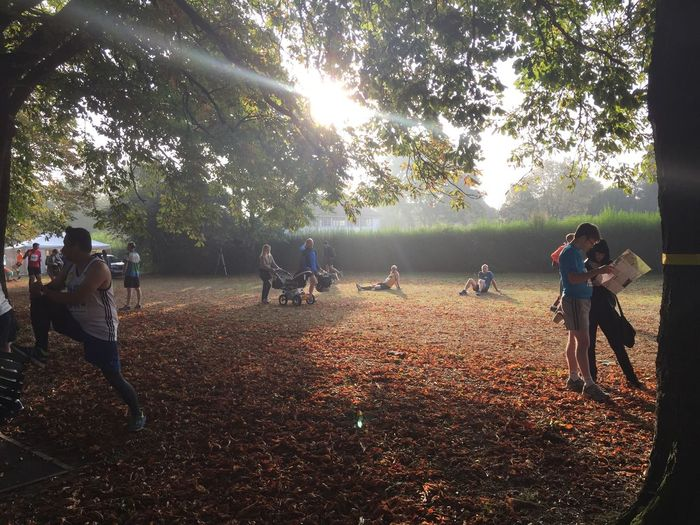 Pre-Half. Early Morning Half Marathon Preparation  Autumn Leaves Sun Trees Park Walk In The Park Sun Through Trees London Lifestyle Enjoy The New Normal
