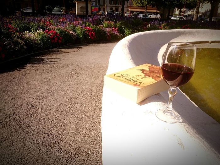 Wine Not Red Wine Drink Nature FlowerAlcohol Outdoors Wineglass No People Water Book Park Day