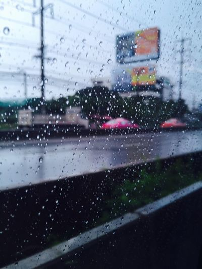 Do you like the rainy day?