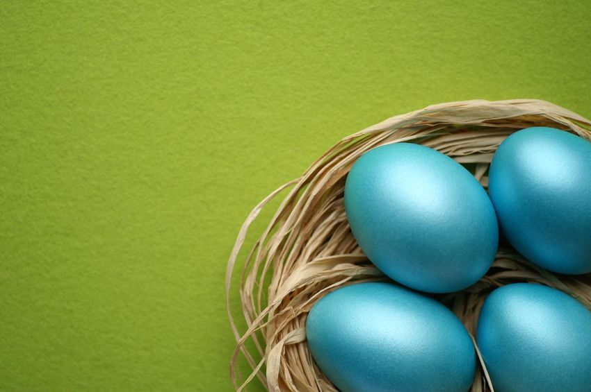 Blue easter eggs on green felt background Ostern Happy Easter Easter Background Easter Card High Angle View Nobody Copy Space Vibrant Blue Green Easter Eggs Easter Colored Background Studio Shot Egg Still Life Green Background Indoors  No People Green Color Copy Space Easter High Angle View Easter Egg Close-up Blue Basket Animal Egg Celebration Turquoise Colored