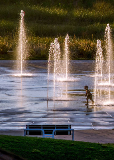 a small child happily runs through fountains as the sun sets on a perfect summers day Children Fountain Kids Park Bench Playtime Run Summertime USA Active Kids Day Evening Happy Time Motion Nature Outdoors Outdoors, Outside, Open-air, Air, Fresh, Fresh Air, People Season  Shildhood Splash Pad Splashing Spraying Sunset Urban Fountain Water