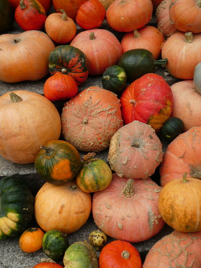 Autumn colors Erntedankfest Halloween Herbststimmung Kurbis Auswahl Thanksgiving Abundance Backgrounds Food And Drink Freshness Harvest Healthy Eating Herbstfarben High Angle View Market No People Pumkins Ripe Vegetable