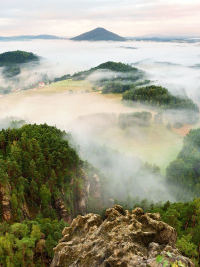 Spring misty landscape. morning in beautiful hills. rocky peaks increased from heavy creamy fog.