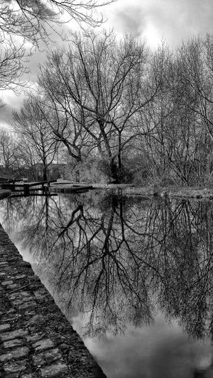 A walk around Rochdale canal near where i live Taking Photos Check This Out See The World Through My Eyes Nature On Your Doorstep EyeEm Masterclass Creative Light And Shadow Fujifilm Hdr Photography Pure Photography Hdr_Collection Here Belong To Me Landscape With Whitewall UK Canals Canals And Waterways Bnw Photography EyeEm Hdr-Collection Reflections Reflected In The Glassy Stillness Of The Water EyeEm Water Reflection Eyeem Water Collection Black And White Collection  Black And White Portrait Bnw_collection Eyeem Black And White Photography Black & White Monochrome Creative Light And Shadow Shades Of Grey Black And White Photography Monocrome