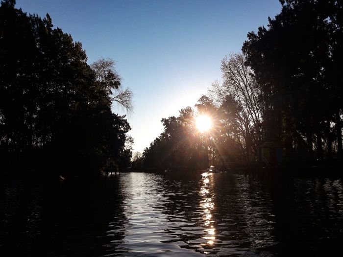 River Islas Del Delta Rio Carapachay Lancha Tree Water Sunset Lake Reflection Sunlight Sky