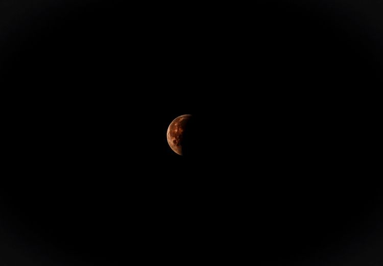 Eclipse lunar moon Copy Space Sky No People Nature Beauty In Nature Night Moon Astronomy Planetary Moon Space Tranquility Low Angle View Studio Shot Outdoors Clear Sky Close-up Animal Dark Tranquil Scene Scenics - Nature