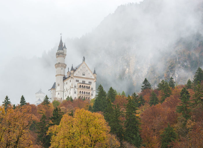 Neuschwanstein Castle with Autumn colors, Fussen, German Tree Plant Autumn Nature Architecture Fog Built Structure Change No People Forest Building Exterior Day Growth Land Beauty In Nature Sky History The Past Tranquil Scene