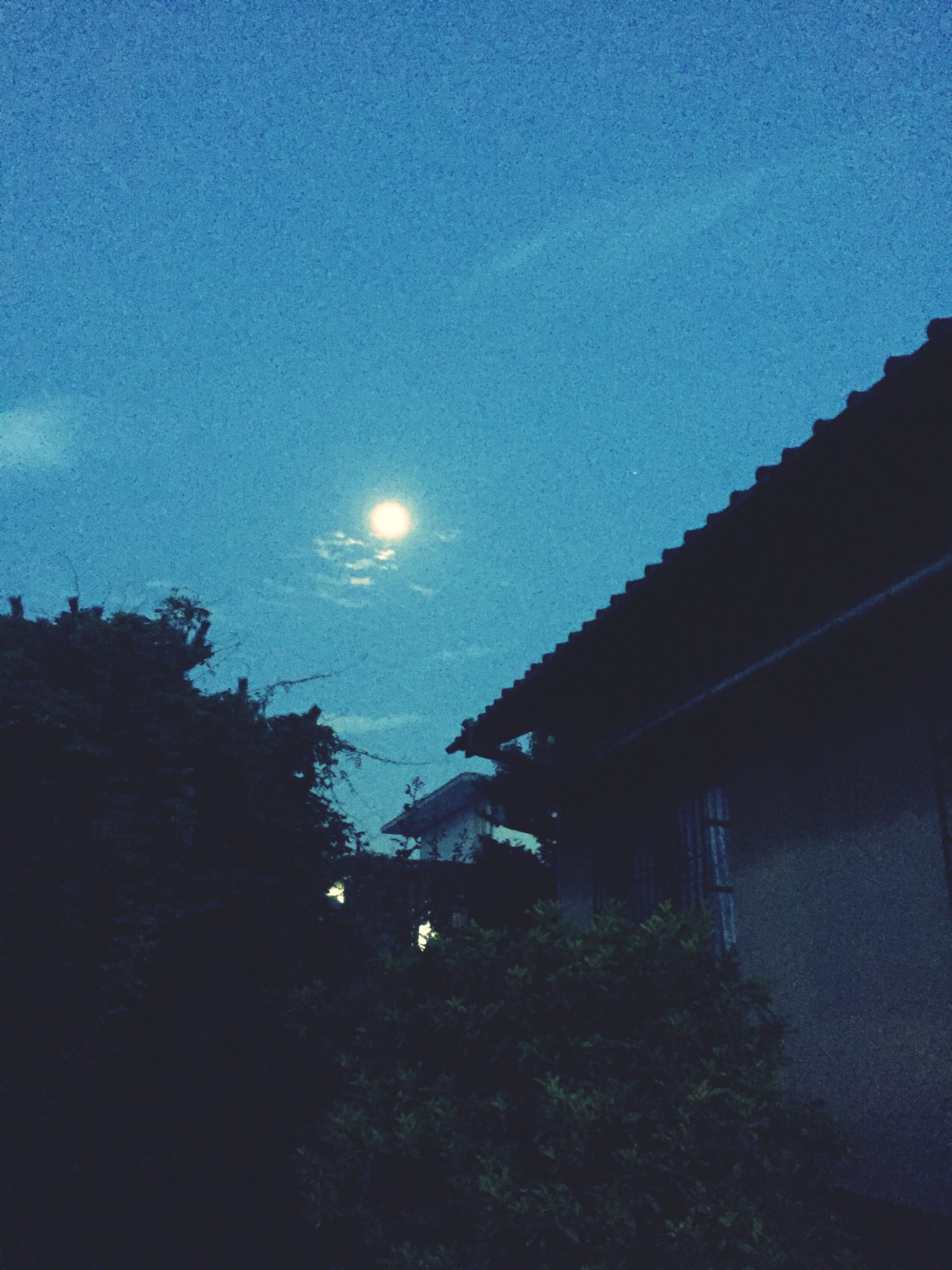 night, moon, sky, built structure, building exterior, architecture, tree, blue, low angle view, house, illuminated, nature, beauty in nature, tranquility, scenics, dusk, star - space, silhouette, astronomy, outdoors
