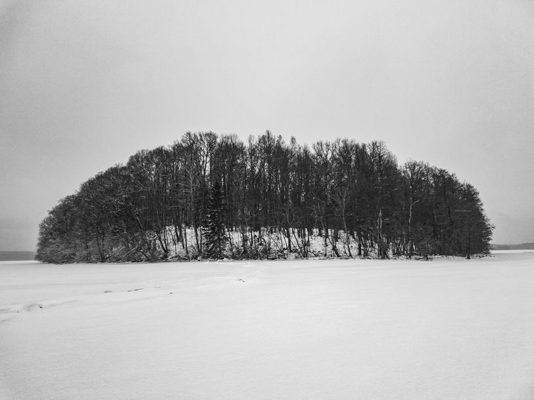 Island on the frozen lake EyeEmNewHere Clouds Cloud - Sky Black And White Frozen Lake Island Snow Winter Cold Temperature Tree No People Outdoors Pine Tree Nature Day Snowing Beauty In Nature Sky The Traveler - 2018 EyeEm Awards The Still Life Photographer - 2018 EyeEm Awards The Great Outdoors - 2018 EyeEm Awards The Creative - 2018 EyeEm Awards