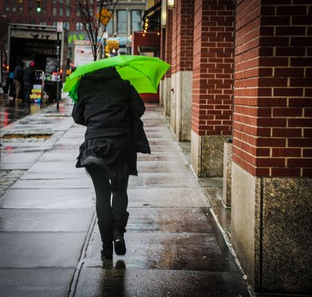 Walking One Person New York ❤ Colors Color New York, New York New York City Photos New York Urbanphotography Streetphotography New York City Street Photography Manhattan Manhattan New York Rain Raining RainyDay The Street Photographer - 2017 EyeEm Awards The Street Photographer - 2018 EyeEm Awards