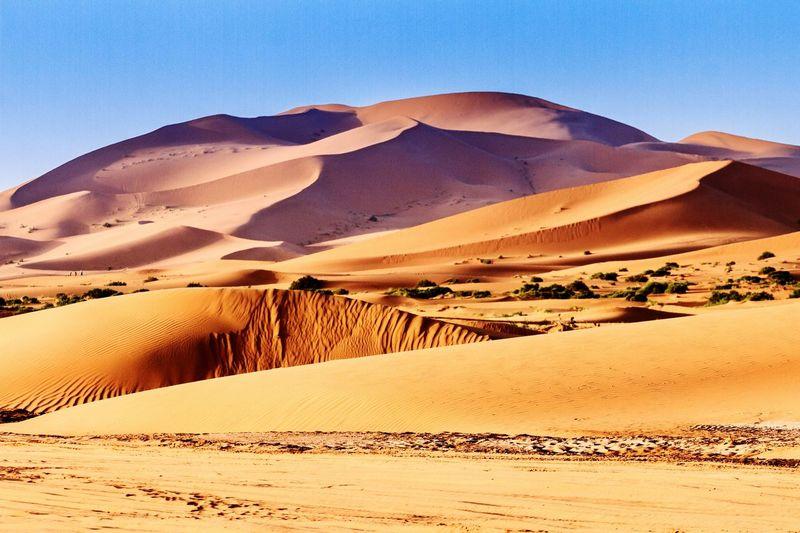 Sahara Merzouga