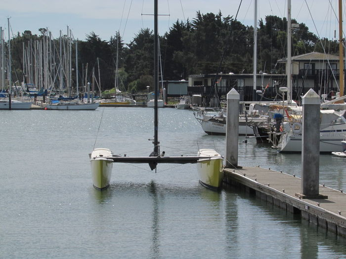 Architecture Day Harbor Marina Mast Mode Of Transportation Moored Nature Nautical Vessel No People Outdoors Pier Pole Post River Sailboat Transportation Tree Water Waterfront Wooden Post Yacht