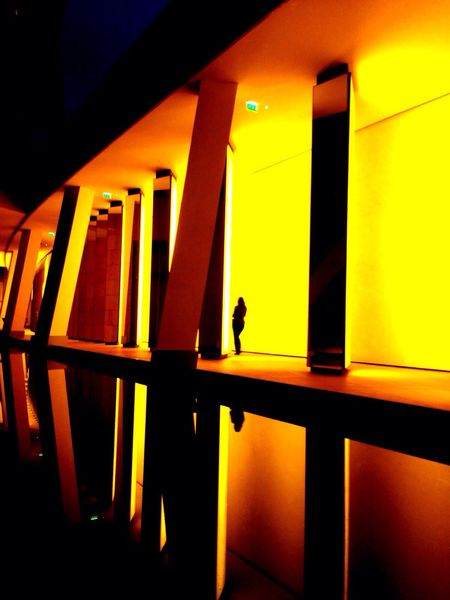 Fondation Louis Vuitton  Paris Inthecity  Night Lights Architecture Reflects