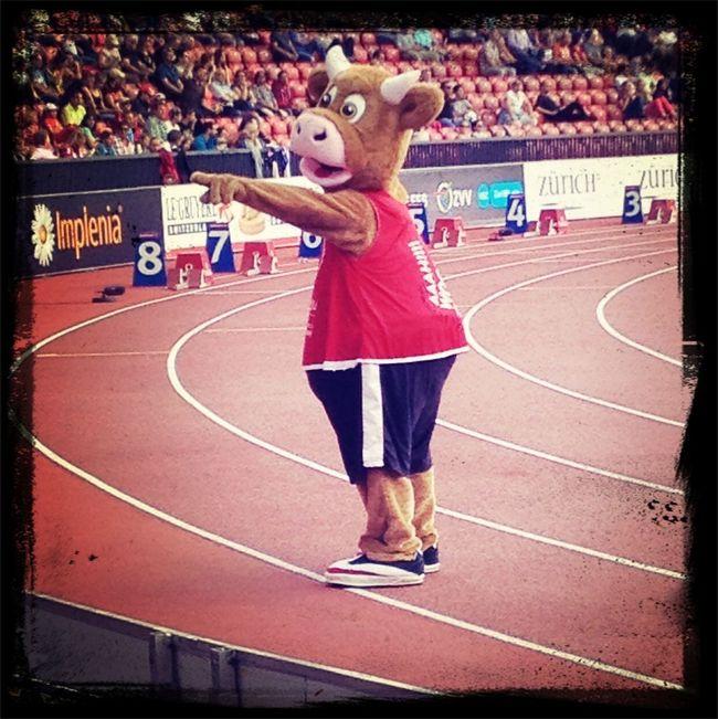 Zuerich14 Cooly Leichtathletik