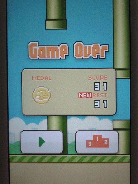 oh nooo :'( Flappy Bird