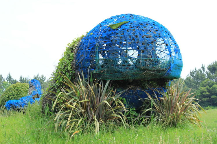 Art Blue Creativity Decrepitude Grass Whale