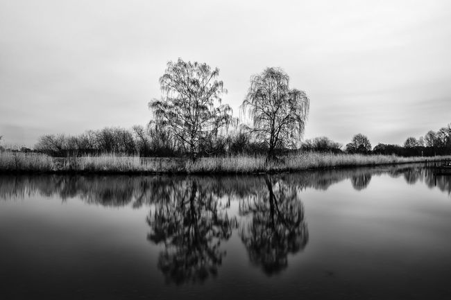 Beauty In Nature Blak And White Day Lake Monochrome Nature No People Outdoors Reflection Scenics Schwarzweiß Sky Standing Water Tranquil Scene Tranquility Tree Water Waterfront Perspectives On Nature Black And White Friday