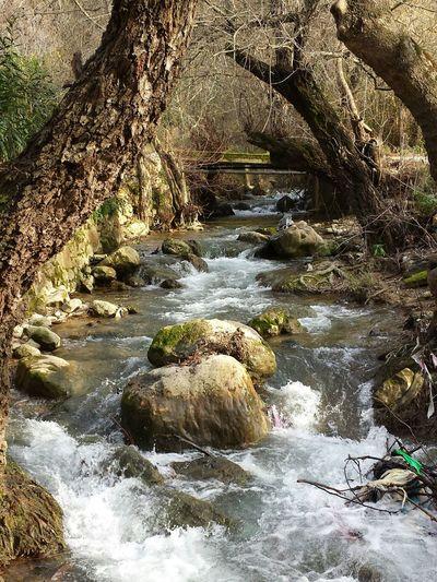 Shouf deir dourit river Relaxing