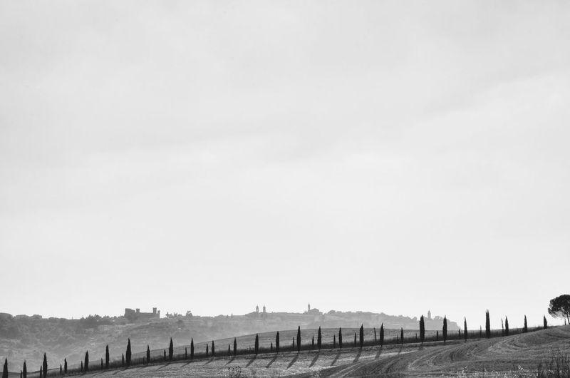 Montalcino. Skyline Tuscany Cloud - Sky Landscape No People Outdoors Plant Sky Tranquil Scene
