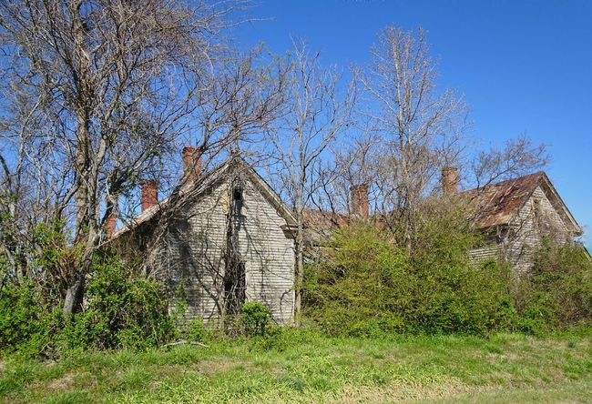 This old abandoned house in the middle of nowhere has five chimneys! Abandoned Abandoned Places Abandoned House Overgrown Naturereclaims Old House No People Rural Rural Scene Rural America Rural North Carolina Decay Ruins_photography North Carolina Creepy House