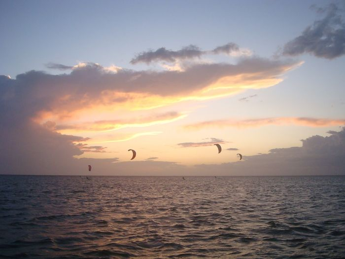 Kite Kitesurfing Kiteboarding Kites Kiteboard Wind Windy Bird Flying Water Sea Sunset Beauty Silhouette Sky Spread Wings Water Sport Flight Kite - Toy Go Higher