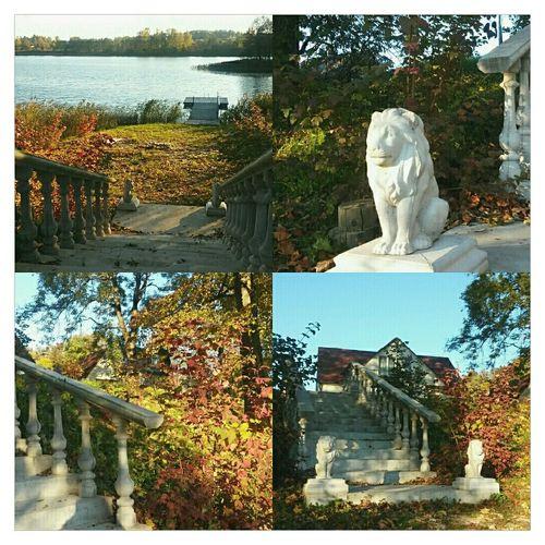 Уютное и романтическое местечко 😊😍💕 Latvia латвия EyeEm VSCO Fall Autumn осень Autumn Colors озеро краски осени