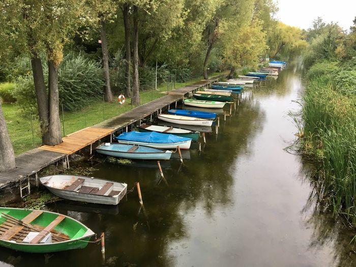 Water Tree Nautical Vessel Outdoors No People Nature Tranquility Lake Lake Balaton