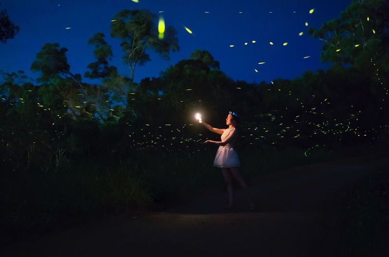 Live For The Story Night Fireflies Portrait Women