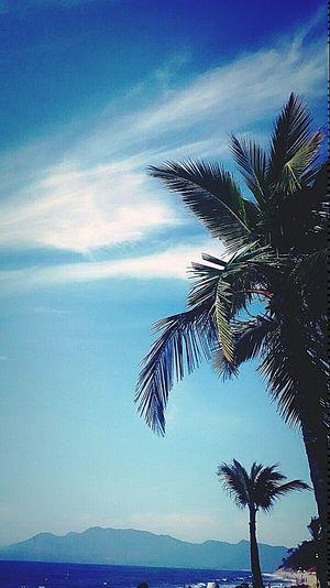 Me diz por que que o céu é azul? Traveling In Heaven Relaxing Praia Beach Photography Sol Sunset Enjoying Nature