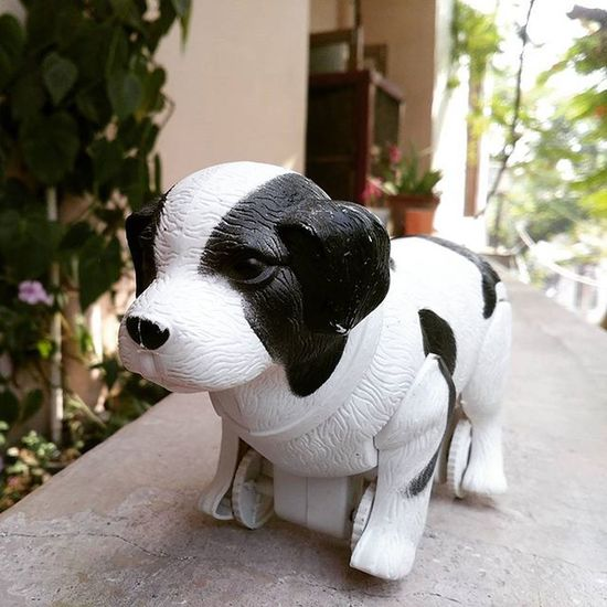 Cute toy puppy....😆😆 Cutness Toy Oyemyclick Vscogood Vcso Vscocam Haridwar Picoftheday Cute Photooftheday Instapic Toygram India Proudtobeindian Greenry