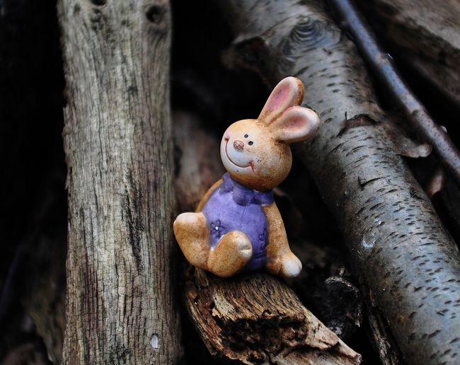 Toy Rabbit Amidst Logs
