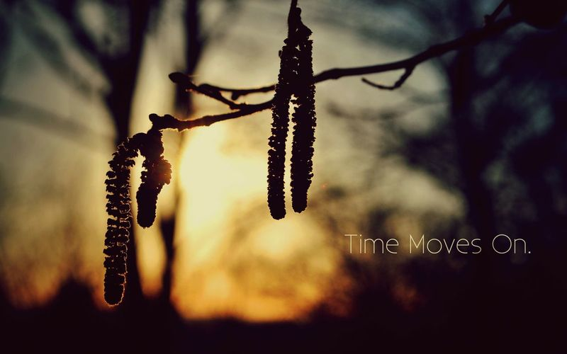 Yeah. Time moves on. ??? Eyeem Philippines Popular Photos North Cotabato Landscape EyeEm Nature Lover Happy People Clouds And Sky Open Edit