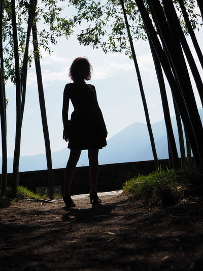 Sunny Woman Perspective Portrait Contrast #Strong Posture #botanicalgardens Bamboo Backlight Tree Full Length Women Silhouette Sky International Women's Day 2019