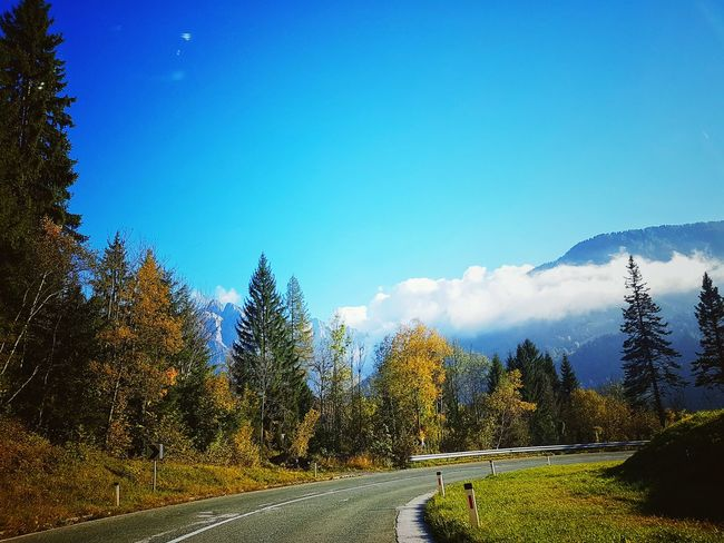 Country Road Landscape Road Clear Sky EyeEmBestPics EyeEm Gallery TheWeekOnEyeEM Contrasting Colors EyeEm Best Edits Freshness EyeEm Best Shots - Nature Slowenia