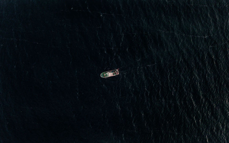 High angle view of crab in sea