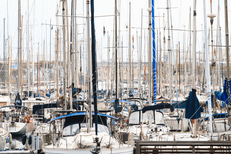 Sailboats Moored At Harbor