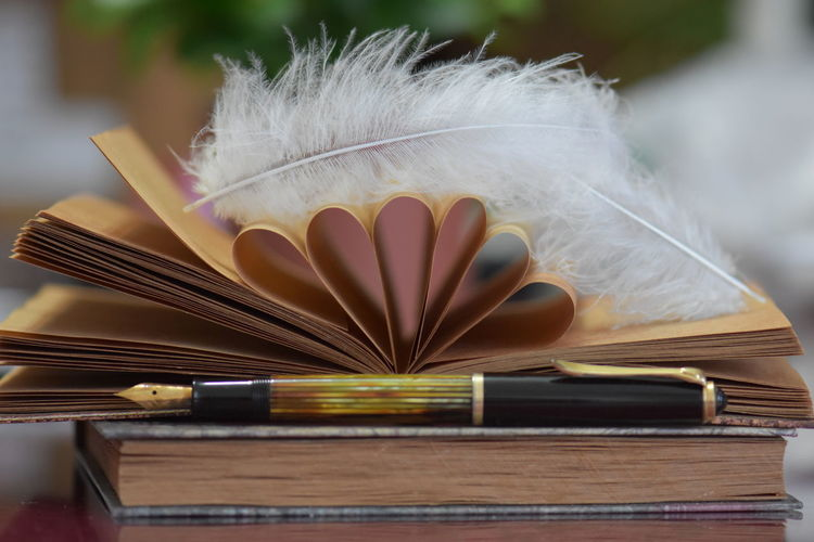 Close-up of feather and books with fountain pen