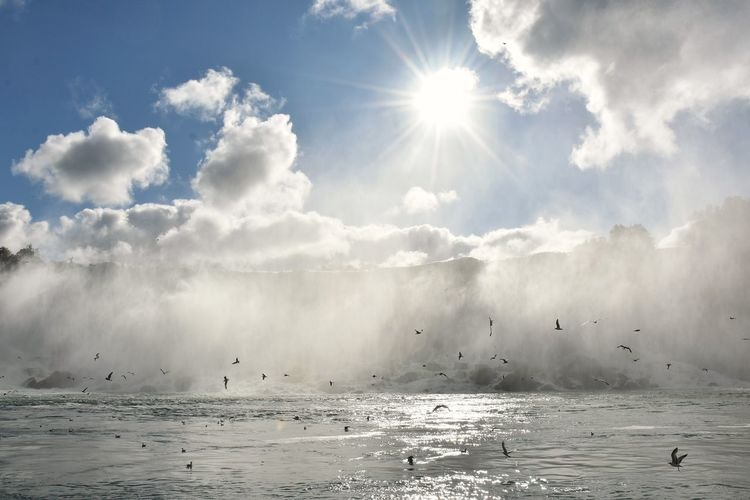 American Falls Cloud Nature Niagara Falls Power Bird Mist Motion Power In Nature Sky Sunflare Water Lost In The Landscape