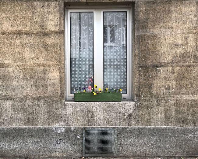 Closed window in building