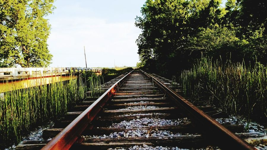 Railroad Track Rail Transportation Water Day Outdoors No People Cloud - Sky Sky Tree Nature