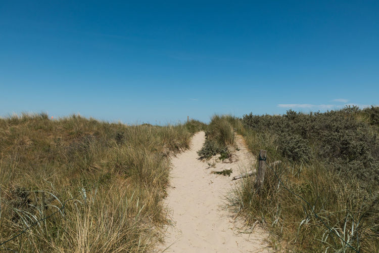 Dunes. Dunes Beauty In Nature Clear Sky Copy Space Day Direction Dune Environment Field Footpath Grass Growth Land Landscape Marram Grass Nature No People Outdoors Plant Scenics - Nature Sky The Way Forward Trail Tranquil Scene Tranquility