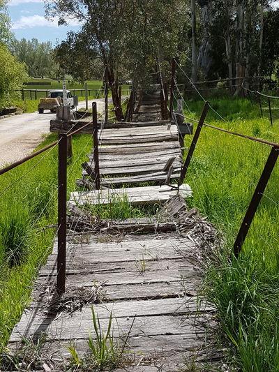 Historic Swinging Bridge Charleston South Australia No People