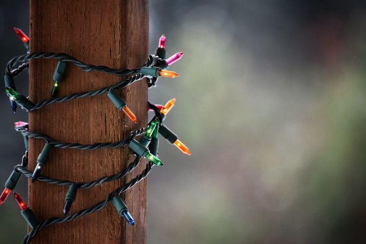Close-Up Of Fairy Lights Around Wooden Post