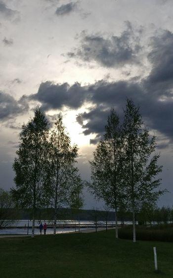 Myhomebeach Tree Cloud - Sky Outdoors Beachphotography Lahti, Finland