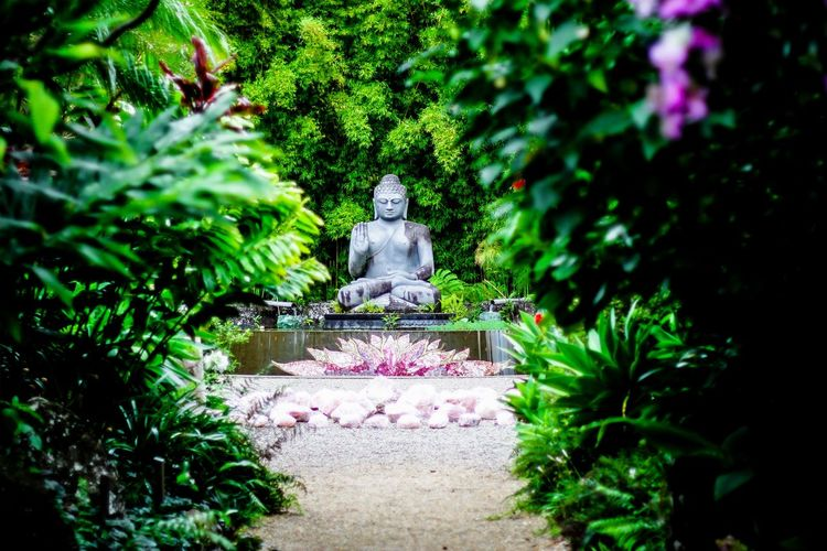 Green Color Beauty In Nature Sculpture Nature Plant Outdoors Illuminated Tourism First Eyeem Photo Travelling Green Buddhism CrystalCastle Lotus Meditation Religion Statue EyeEmNewHere The Week On EyeEm