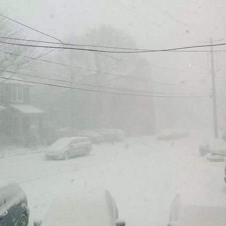 The view from my living room window. It's a bit snowy out there! . . . . Whiteout Snowfall Blizzard Flurries Canadianwinter Ontario Kingston_ontario