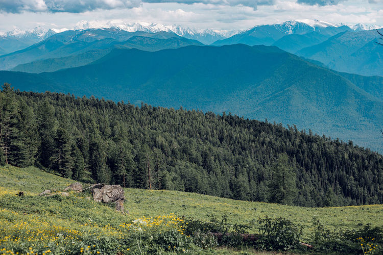 Scenic view of land and altai mountains against sky