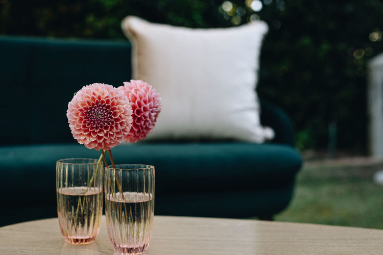 Beauty in simplicity Flowers :) Table Outdoors Lounge Outdoor Lounge Focus On Foreground Flower Flowering Plant Plant Nature No People Beauty In Nature Luxury Coffee Table Close-up Refreshment Flower Head Day Still Life Moody Velvet Pillow